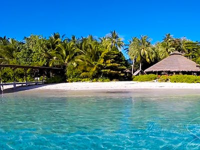 aloita resort mentawai islands