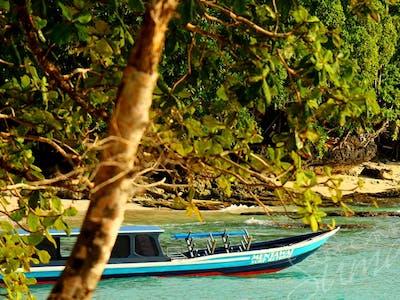 MSRs private speedboat