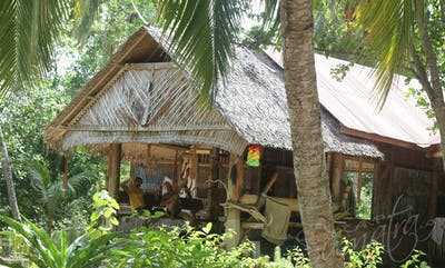Shadow camp mentawai