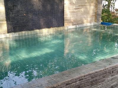 Damai Bungalows pool
