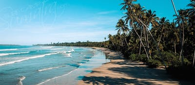 The local beach break, just a 20 minute walk away