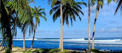 Lances Left, one of the most consistent lefts in Sumatra