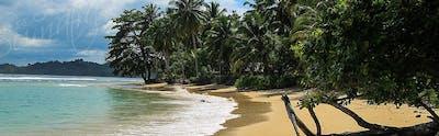 Shoreline at Luluni