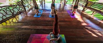 Yoga session at Awera