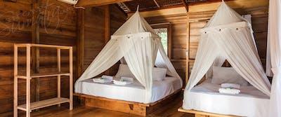 Air conditioned jungle villa