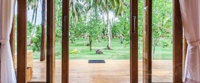 Garden view from a jungle villa