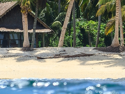 Nothing but tropical water, coconut trees and a white sandy beach