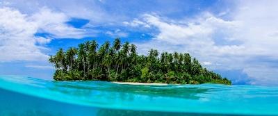 A tropical paradise awaits