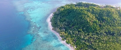 This is pulau silabok the home of villa mentawai