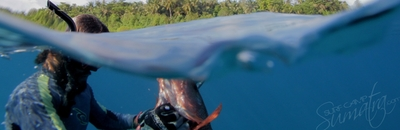 Spear fishing on your doorstep