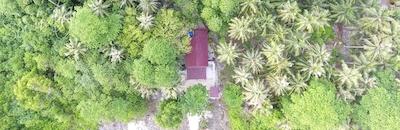 Sozinhos from above