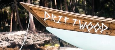 Driftwood speedboat