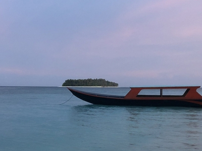 The small speedboat can take up to 4 guests
