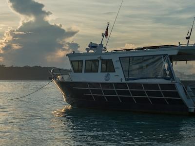 Sifika Gaya safe comfortable and capable of 32 knots