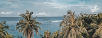 Welcome to the Mentawai Islands