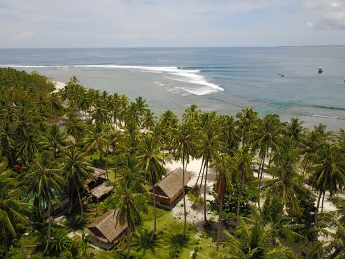 Kingfisher Resort Surf Camp