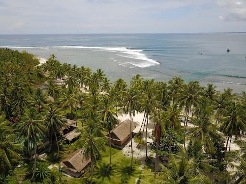 Kingfisher Resort Surf Camp