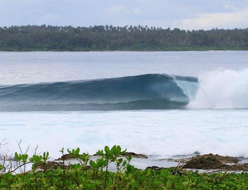 Salt Surf Resort Surf Camp