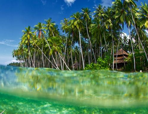 Telos Surfing Village  Surf Camp