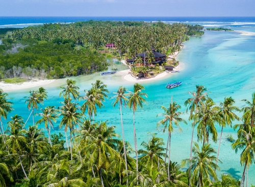 Macaronis Resort Surf Camp