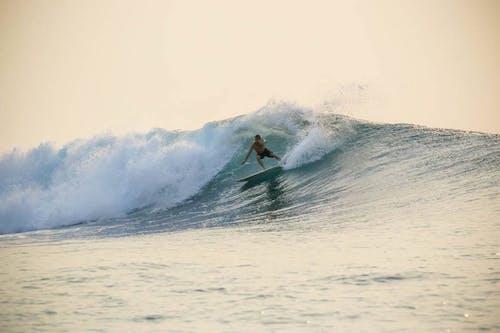 Tikus  surf break Sumatra