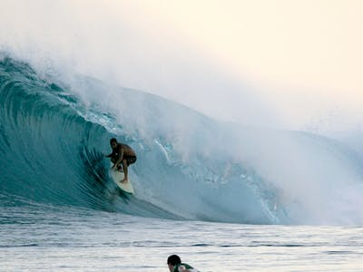 Slotted in the Banyal islands
