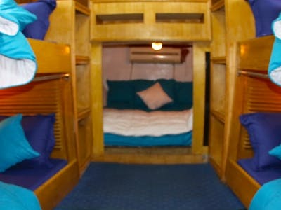 Fully air conditioned cabin