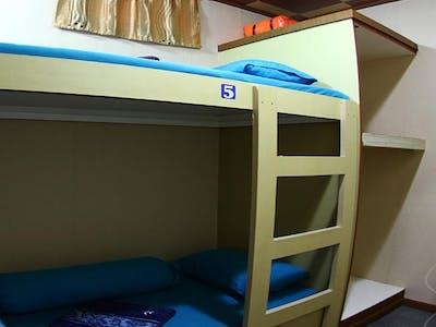 2 single bunk room
