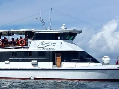 The Swell Lines surf charter boat