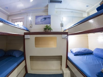 3 or 4 guests per cabin