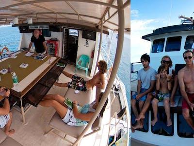 DBora Surf Charter