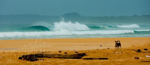 Beachie Telo Islands