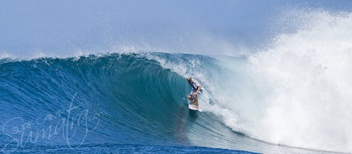 Bank Vaults Mentawai Islands