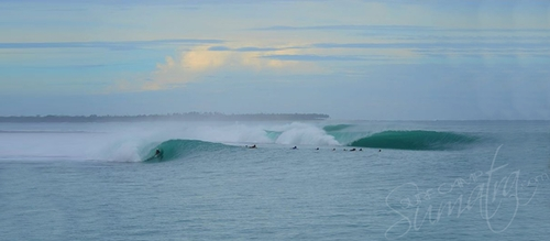 Macas Mentawai Islands