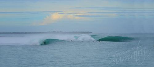 Macas Mentawai Islands