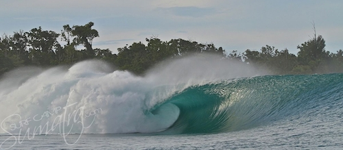 Big Bush Mentawai Islands