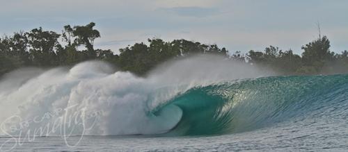 Big Bush Mentawai Islands