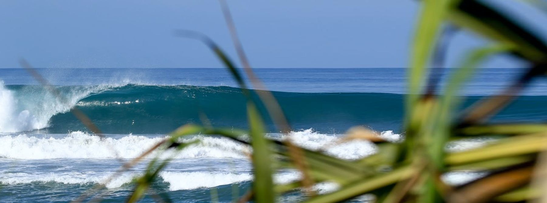 surf mandiri