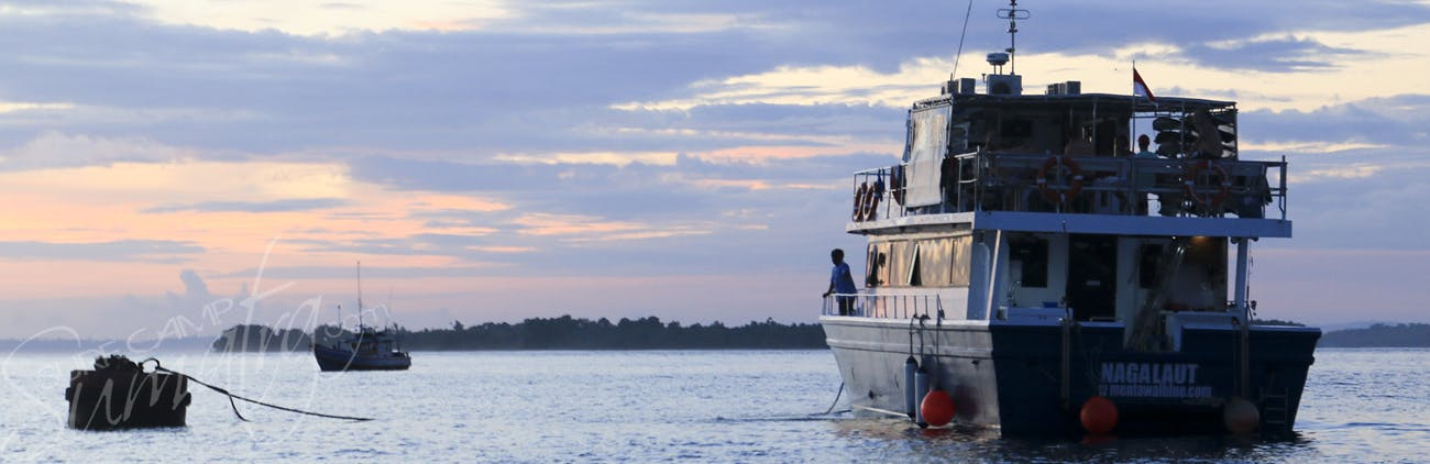 naga laut charters