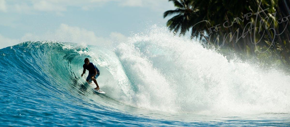 telos surf
