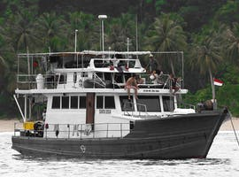 Wave Hunter Charters
