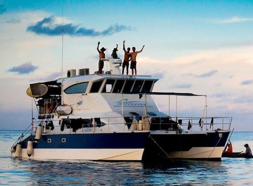 Switch Foot Charters